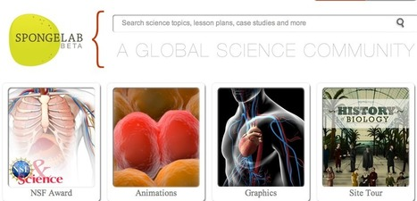Spongelab | A Global Science Community - with science animation, images, games & more | science board | Scoop.it