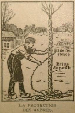 Rétro 1927: Recettes de la Vie Pratique (LXXIII) - Le jardin - Techno-science.net   pour mon jardin   Scoop.it