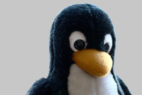 Las mejores aplicaciones para Linux del 2014 | Software libre | Scoop.it