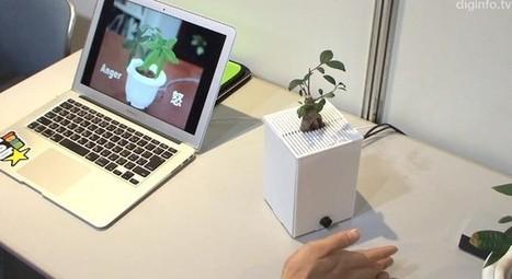 Une plante émotive au Japon ! | Cabinet de curiosités numériques | Scoop.it