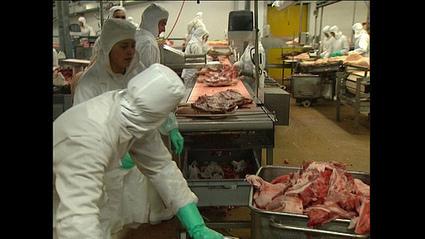 «Entrée du personnel», documentaire sur les travailleurs en abattoir | Vegactu - végétarien, végétalien et végan | Scoop.it