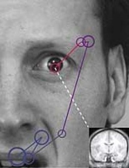 Eye Contact Triggers Threat Signals In Autistic Children's Brains | Technology - Autism | Scoop.it