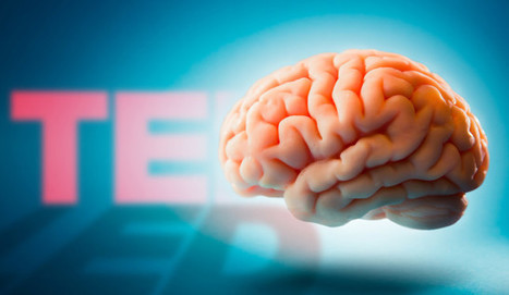 11 Fantastic TED Talks That Explain How Your Brain Works | Teaching in Higher Education | Scoop.it