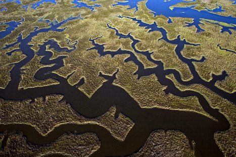 Flying High: A Conversation with Bill Yates About His Aerial Photography - PetaPixel | Leica | Scoop.it
