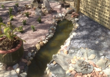 WALTON HIGHWAY: Japanese design on display at garden open to support ... - Lynn News | Japanese Gardens | Scoop.it