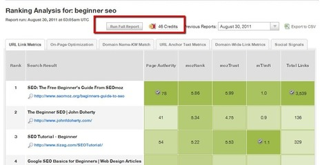 Making SEOmoz's SERP Analysis Tool More Awesome | Excel For SEO | Scoop.it