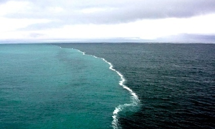Grenen, quand deux mers se rencontrent sans se mélanger | making lot of money | Scoop.it