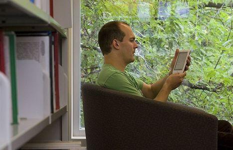 Le livre numérique deux fois plus taxé que le livre imprimé | L'édition numérique pour les pros | Scoop.it