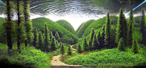 The Lush Underwater Gardens of Competitive Aquascaping | ScubaObsessed | Scoop.it