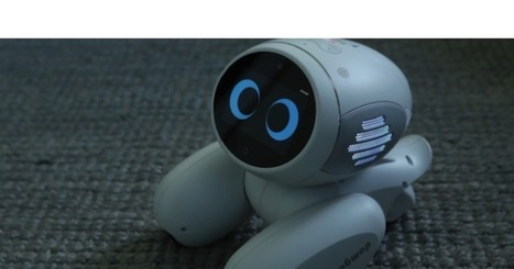 Meet Domgy, an AI pet robot from Beijing startup ROOBO | Une nouvelle civilisation de Robots | Scoop.it