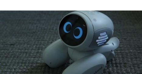 Domgy, robot mascota desde la startup especializ<ada en AI, ROOBO | TechCruch | eSalud Social Media | Scoop.it