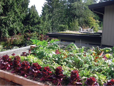 Green roof an age-old concept | Sustainable Urban Agriculture | Scoop.it