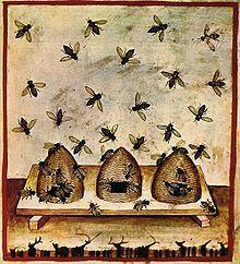 Apiculture : ma ruche je la déclare | Abeilles, intoxications et informations | Scoop.it