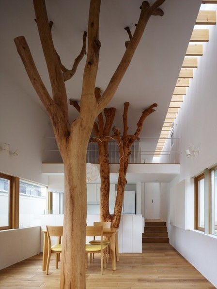 [Kagawa , Japan] Garden Tree House / Hironaka Ogawa & Associates | The Architecture of the City | Scoop.it