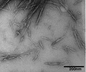 Natural nanocrystals shown to strengthen concrete | NanoCellulose | Scoop.it