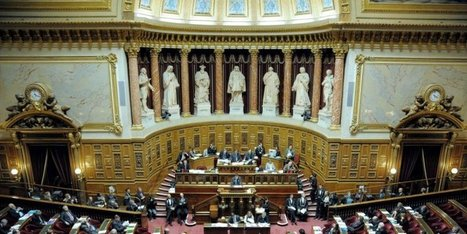 Information et publicité sur le vin  : le Sénat fait la distinction | Agriculture en Dordogne | Scoop.it