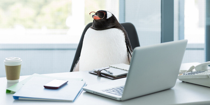 Google Releases Penguin 3.0 — First Penguin Update In 2014 | SEO Services India | Search Engine Optimisation Specialists | Affordable SEO Packages | Scoop.it