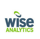 WiseAnalytics Blog » 5 considerations for newbies to BI | Business Optimization - Get the most out of your data. | Scoop.it