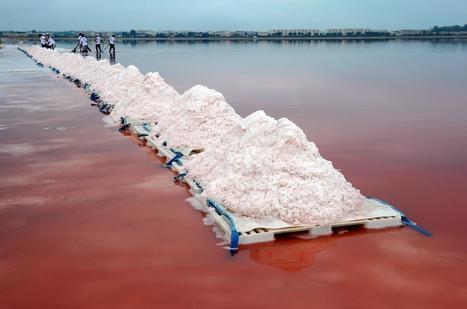 L'excès de sel tue 1,6 million de personnes | www.directmatin.fr | Pains, Beurre & Chocolat | Scoop.it