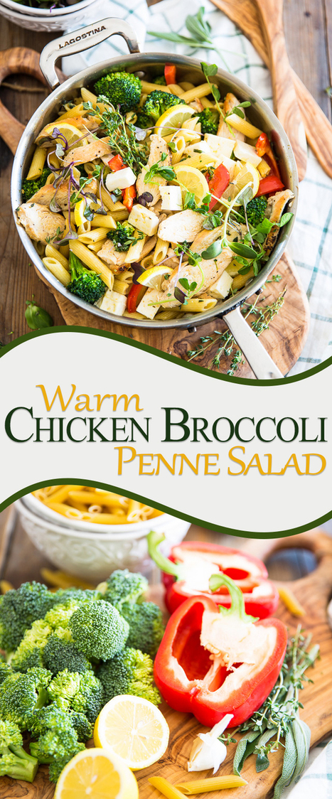 Warm Chicken Broccoli Penne Salad - The Healthy Foodie | Passion for Cooking | Scoop.it