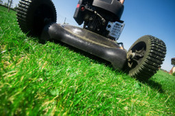Why you should hire an experienced lawn services in Maryland? | JK Property Management | Jkpropertymanagement | Scoop.it