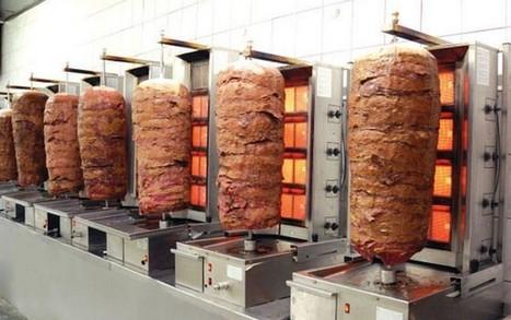 Il kebab? Contiene carne di topo, gatto e cane. Allarme dall'Inghilterra | Editoria e Comunicazione scientifica | Scoop.it