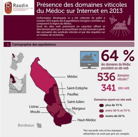 Infographie : Vin, Internet et Médoc en 2013 | mon-ViTi | Oeno-digital | Scoop.it
