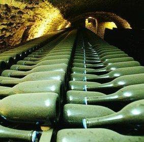 #champagne: Chiffres en bernes, les jeunes s»en mêlent et la croisade s'organise | Champagne.Media | Scoop.it