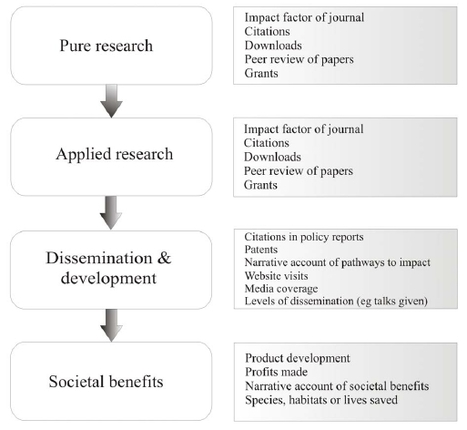 Quantifying the Impact and Relevance of Scientific Research | Academic libraries - bibliothèques académiques | Scoop.it