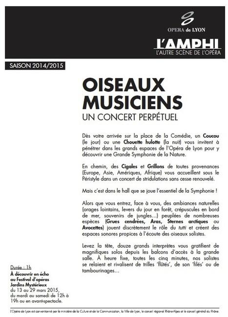 Oiseaux musiciens (un concert perpétuel ) | DESARTSONNANTS - CRÉATION SONORE ET ENVIRONNEMENT - ENVIRONMENTAL SOUND ART - PAYSAGES ET ECOLOGIE SONORE | Scoop.it