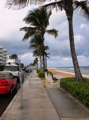 South Florida...Best Place to Live Under the Sun | Spinal Cord Injury Recovery Treatment | Scoop.it