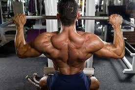 Too Much Bodybuilding Obsession Could Lead To Bigorexia In Males   Jaimee   Scoop.it
