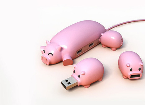 Pig Buddies | Les news du Web | Scoop.it