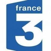 Les livres de la BnF numérisés par Gallica invités chez France 3 | Livres & lecture | Scoop.it