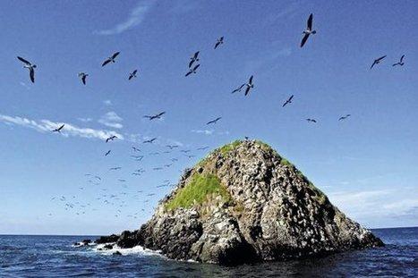 En lo profundo del Pacífico | Agua | Scoop.it