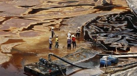 China: 3 millones de hectáreas demasiado contaminadas para cultivar | Las Personas y el Medio Ambiente. | Scoop.it