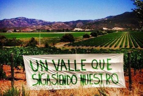 Mexico's Surprising Wine Industry Is In Trouble | Autour du vin | Scoop.it