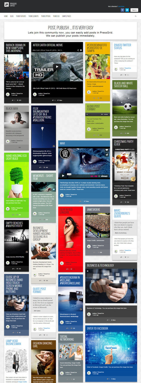 10+ Best Pinterest Inspired WordPress Themes 2014 | Best WordPress Themes 2014 | Scoop.it