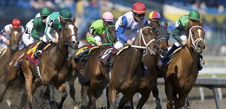 Edmonton: Century Casinos Awarded $50M Contract To Build New Racetrack - Horse Racing News   Paulick Report   Racing Business   Scoop.it