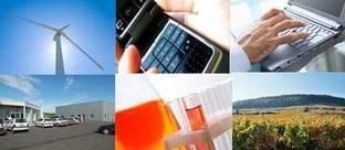 Un outil régional au service de la création d'entreprises innovantes- Synersud | Synersud | Scoop.it