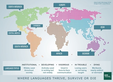 The world's most multilingual cities | Translation and language in the news | Scoop.it
