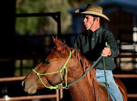 The gentle approach to starting colts. | Horse Fencing & Horse Stalls | Scoop.it