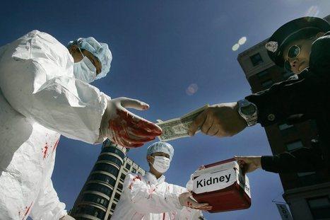 The Human Organ Trade | Society | Scoop.it