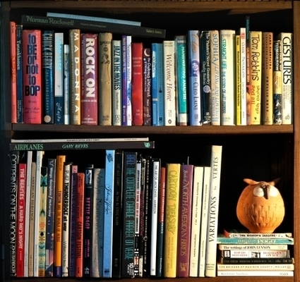 100 Tips & Tools to Create the Ultimate Home Library | Random cool stuff about libraries | Scoop.it