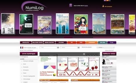 Hachette revend Numilog, qui retrouve son indépendance | À toute berzingue… | Scoop.it
