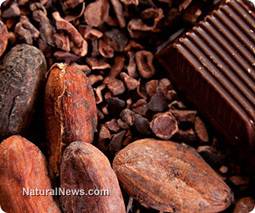 Chocolate generates anti-inflammatory nutrients in your gut | Plant Based Nutrition | Scoop.it