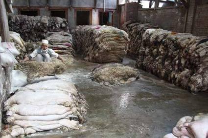 Leather Lackluster! - Kashmir Life | Panipat Exporters, Panipat Rugs, Blanket Suppliers Panipat | Scoop.it