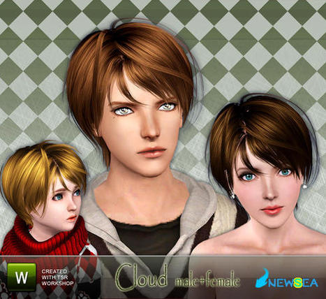 Newsea Cloud Male+Female  Hairstyle : FREE TODAY (TSR) | Sims3 | Scoop.it