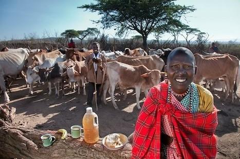 20 citoyens du monde posent avec la quantité de nourriture qu'ils mangent par jour, le poids des différences | Beautifully Dressed Up | Scoop.it