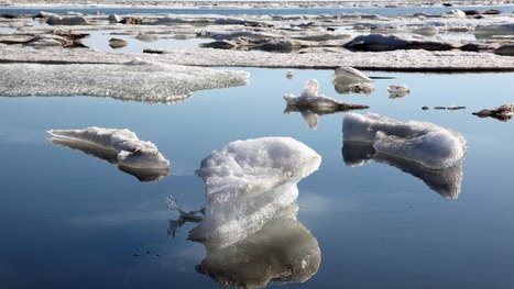 #Antarctica is basically liquefying #melting #climate #methane #extinction | Messenger for mother Earth | Scoop.it